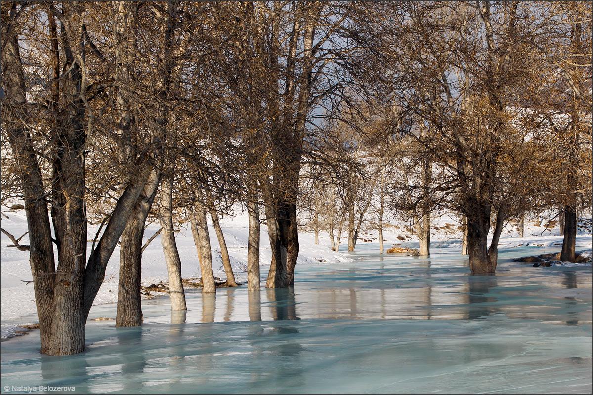 Надель на реке Сардыма. Приток Чуи