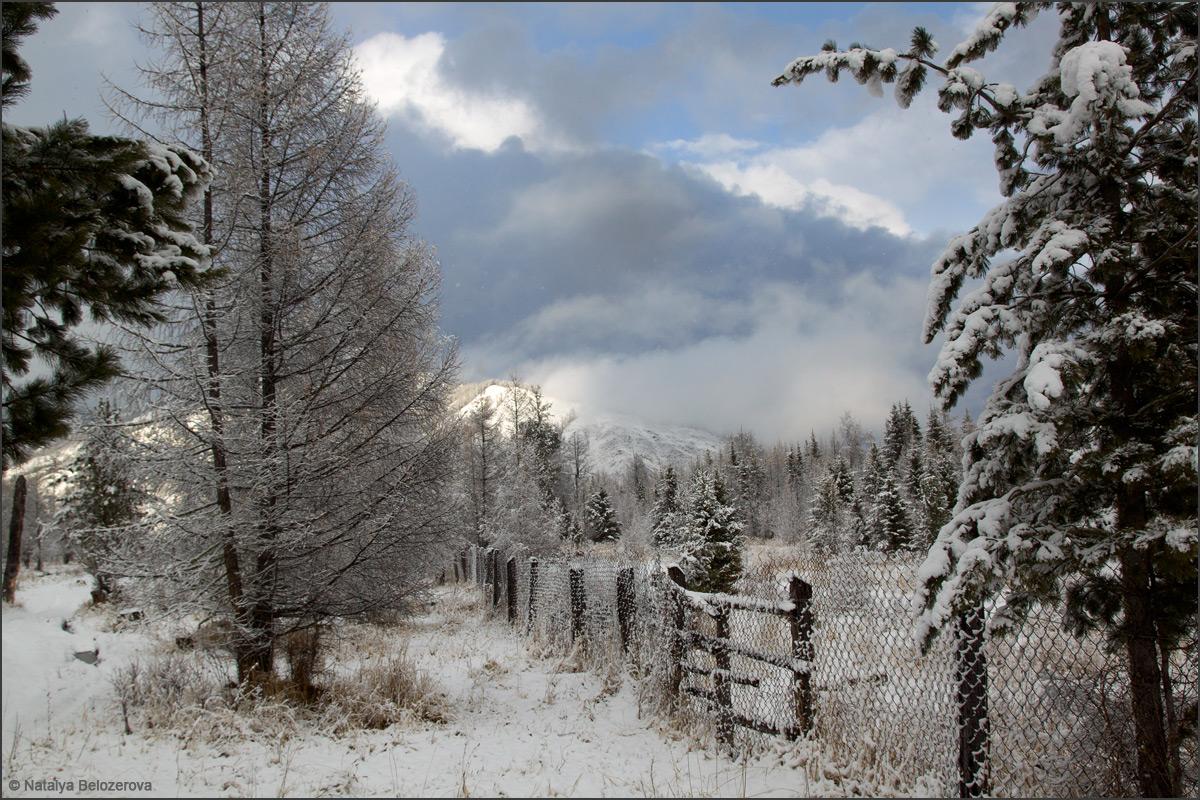 У ворот маральника в долине Мульты