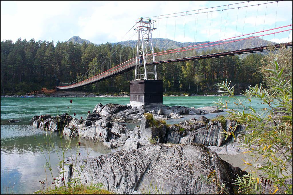 Мост через катунь на Царской охоте
