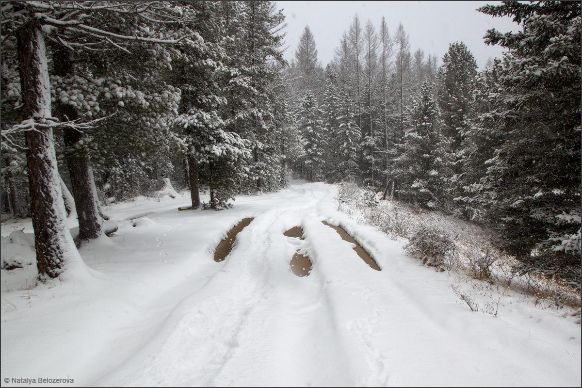 Дорога к озерам в долине Мульты