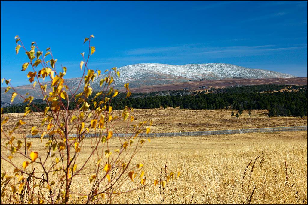 Гора Сарлык с Семинского перевала