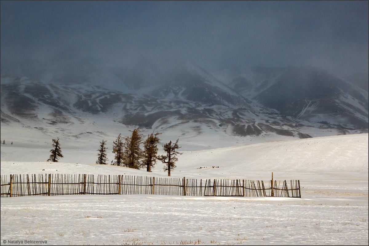 Курайский хребет в снежном облаке