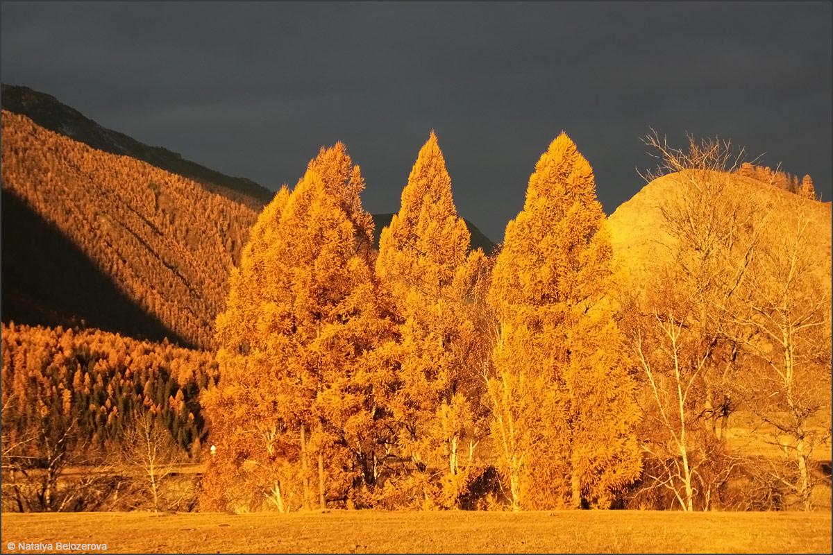 Долина Чуи близ Чибита