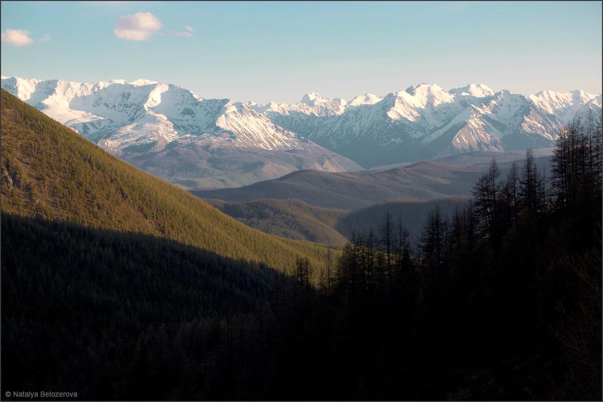 Северо-Чуйский хребет из долины ручья Беленький
