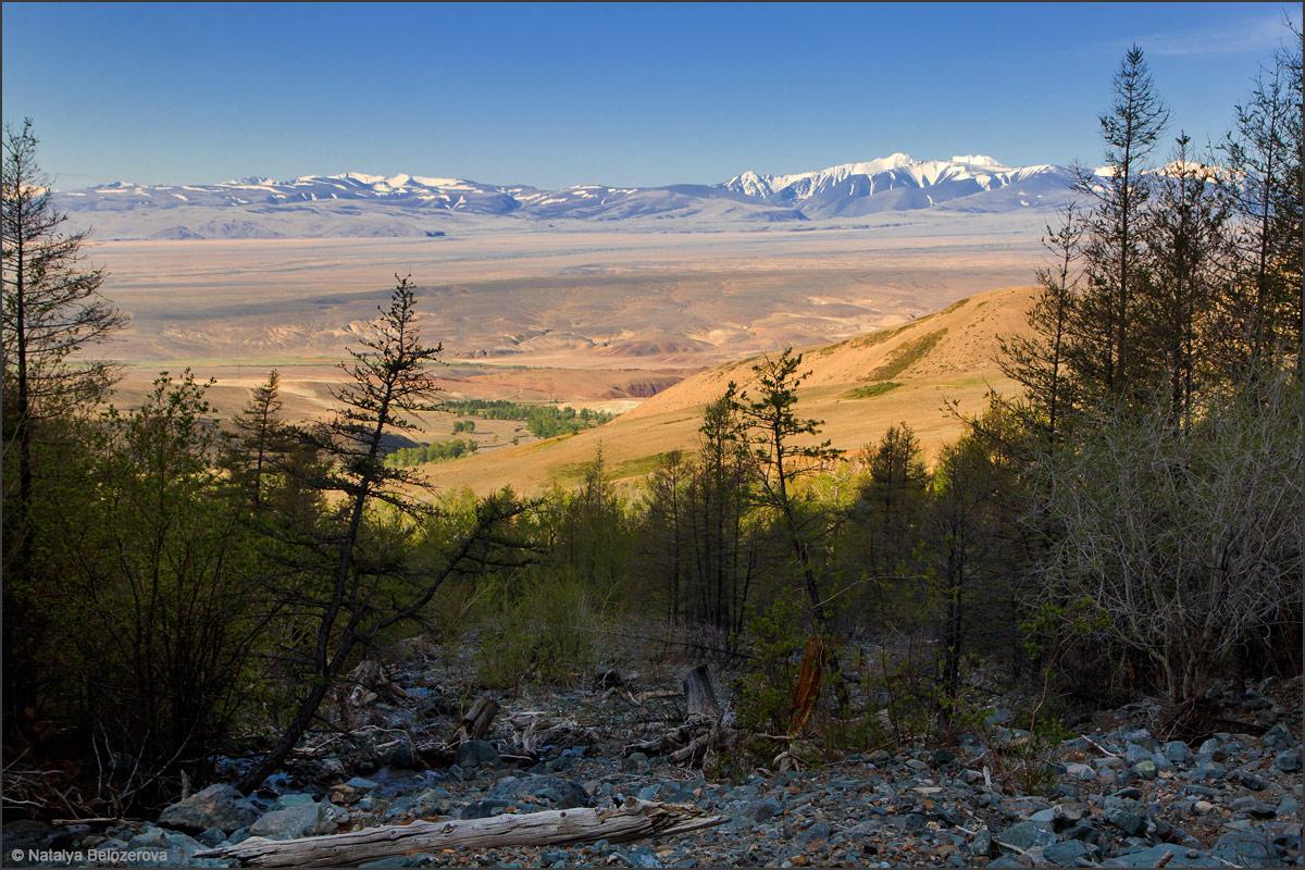 Чуйская степь из долины Тыдтуярык
