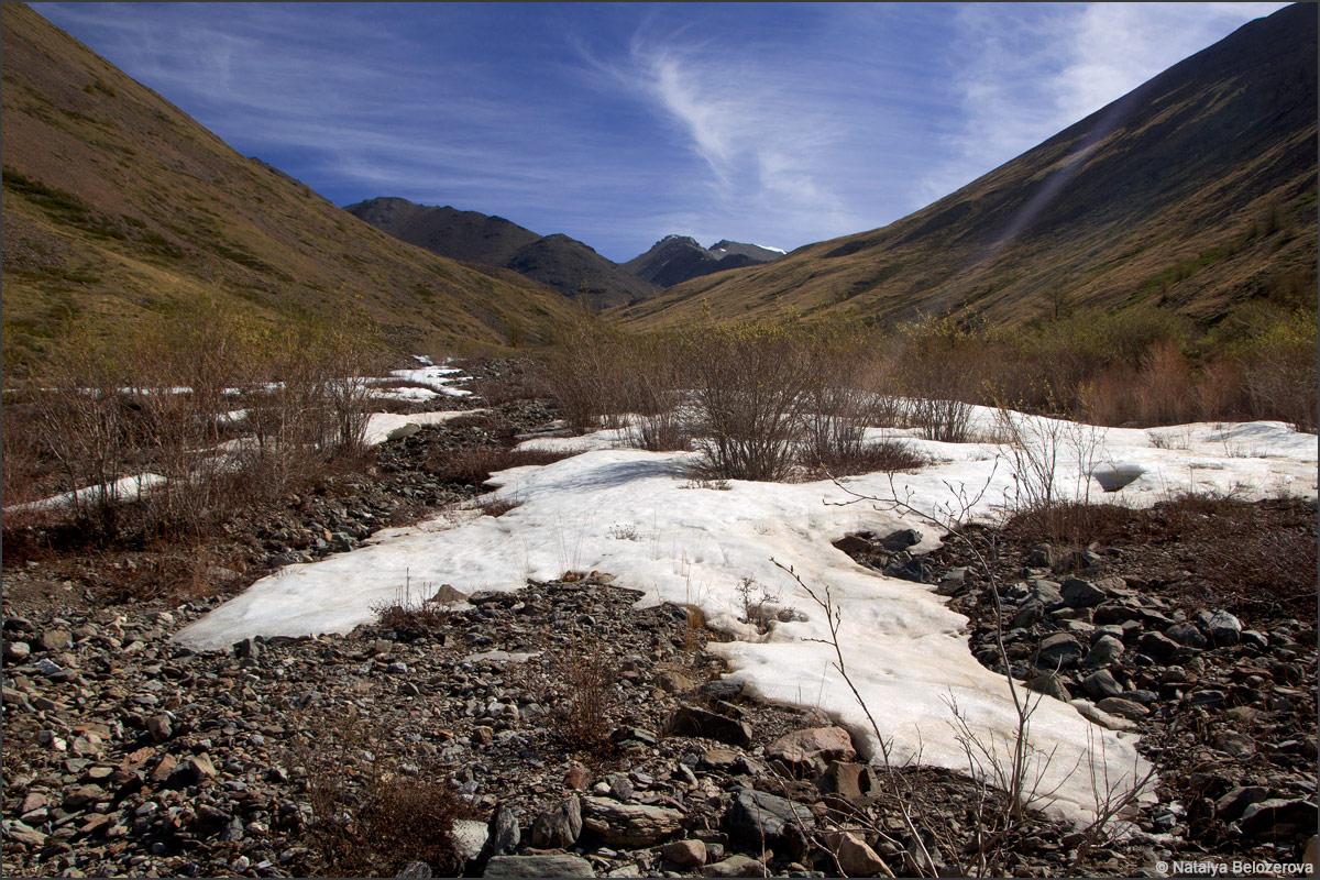 Долина левого притока Тыдтуярык