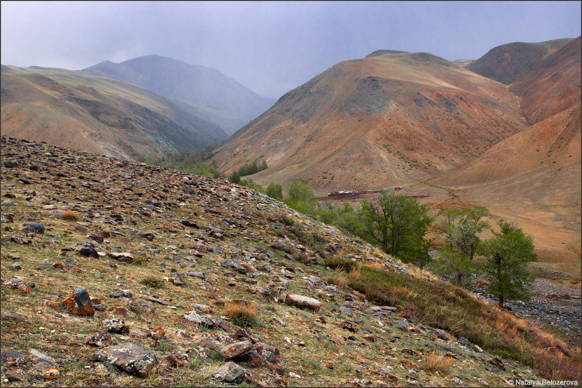 Курайский хребет из долины Тыдтуярык