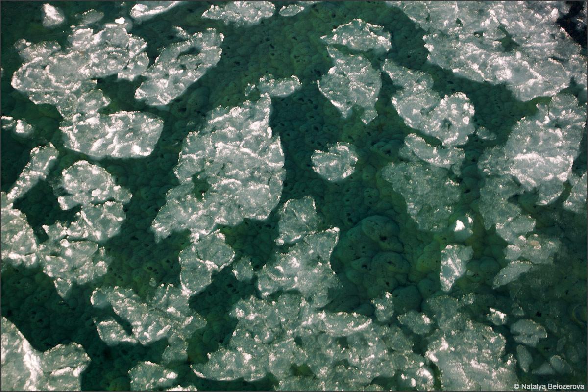 Донный лед на Катуни. С мосте в Усть-семе