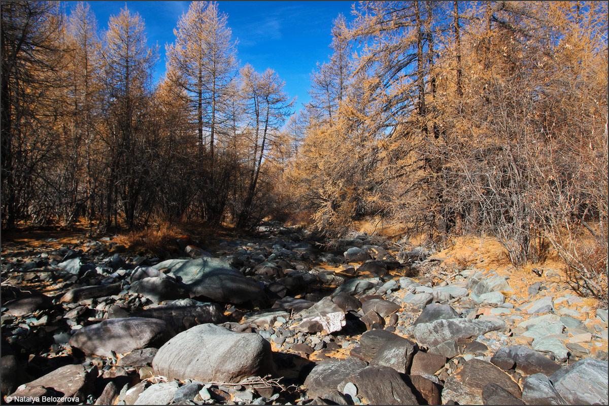 Долина Сайлюгема. Хребет Чихачева
