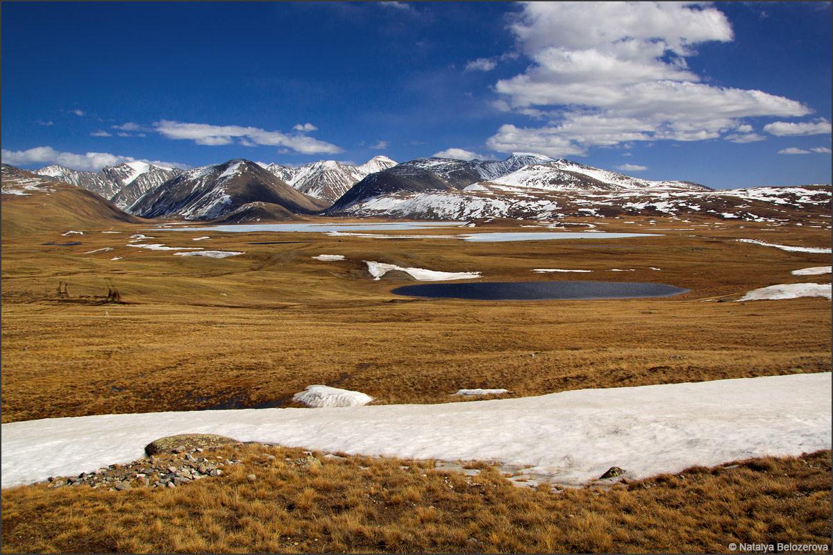 Чуйская степь. Вдали озеро Киндыктыкуль и хребет Чихачева