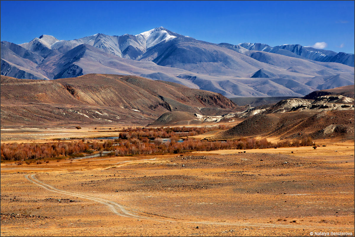 Долина Чаган-узуна. Вдали Курайский хребет