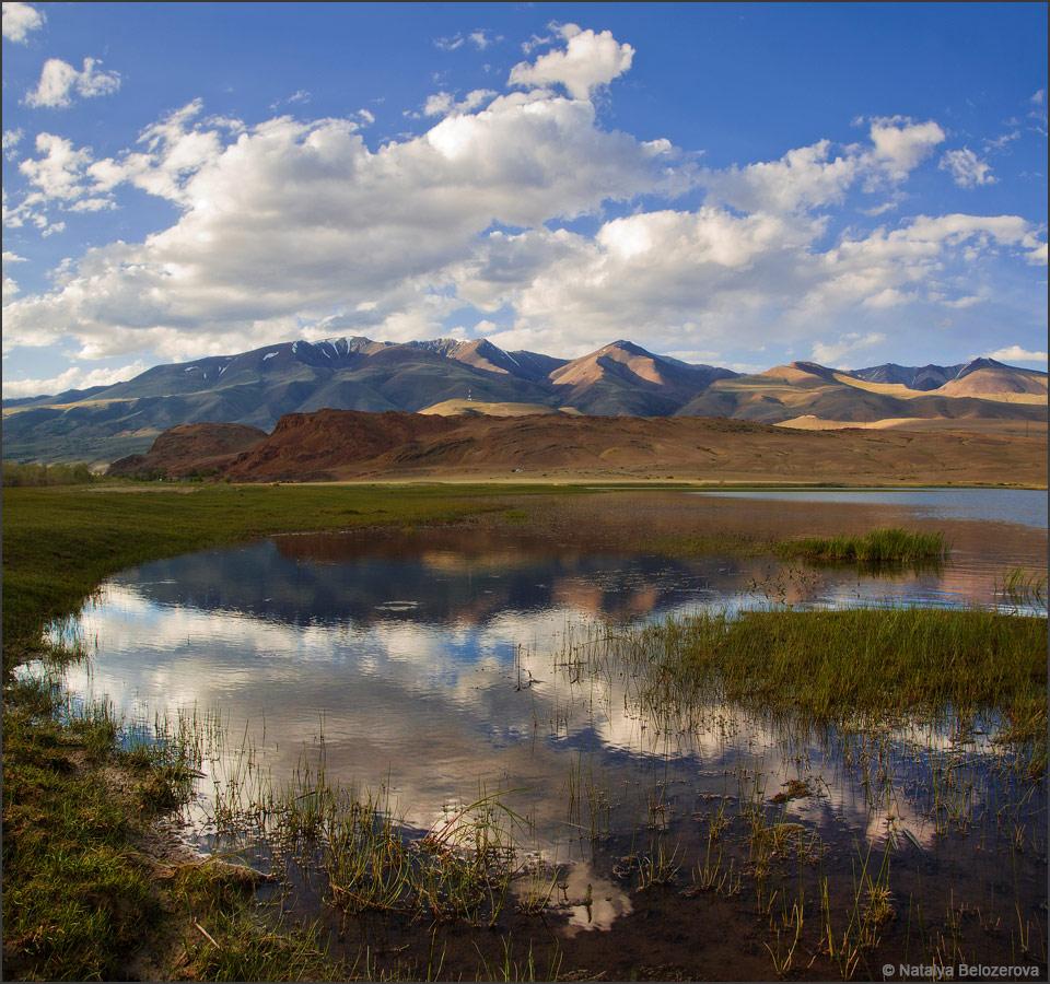 Курайский хребет и озеро Красногорское. Чуйская степь