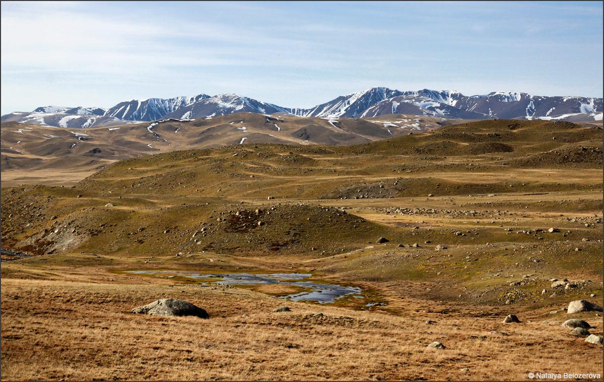 Чуйская степь. Долина Богуты. Вдали массив Талдуайр