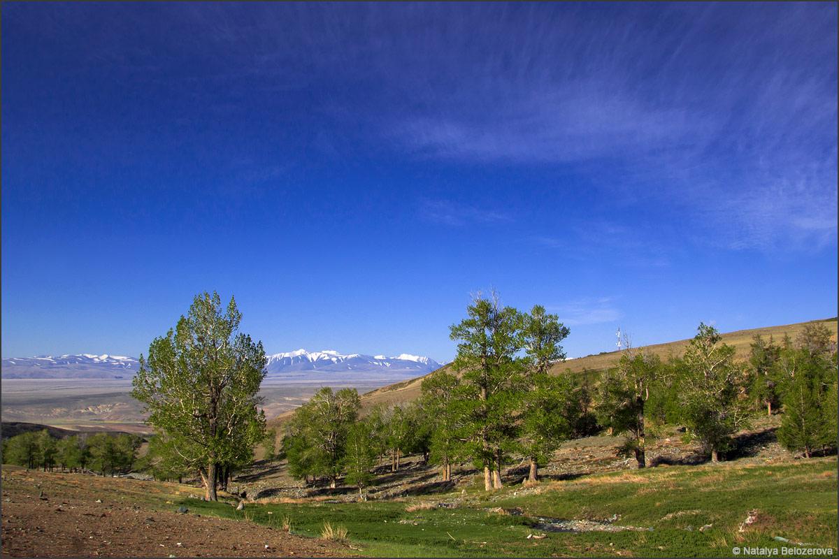Чуйская степь. Долина Тыдтуярык