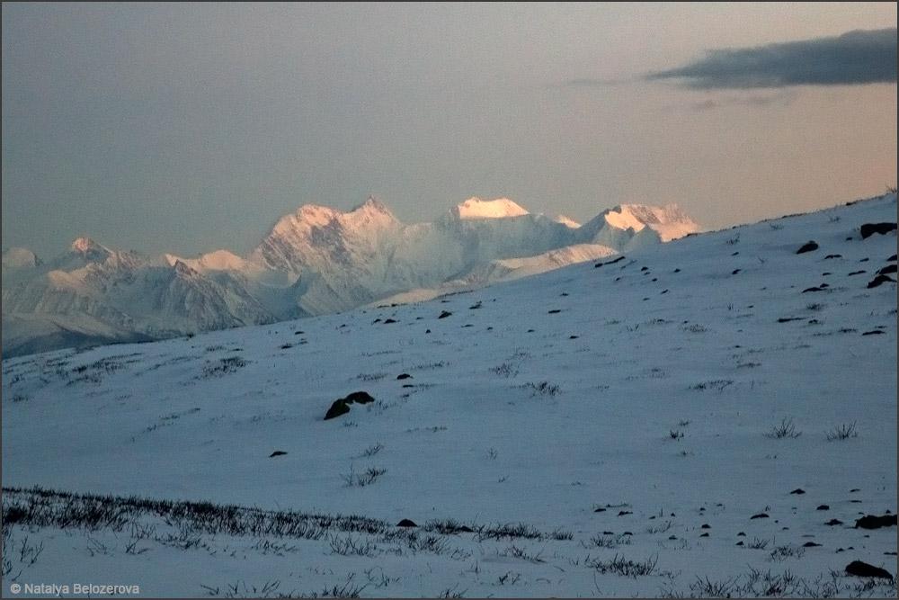 Белуха от озера Нижнее Тюргундинское