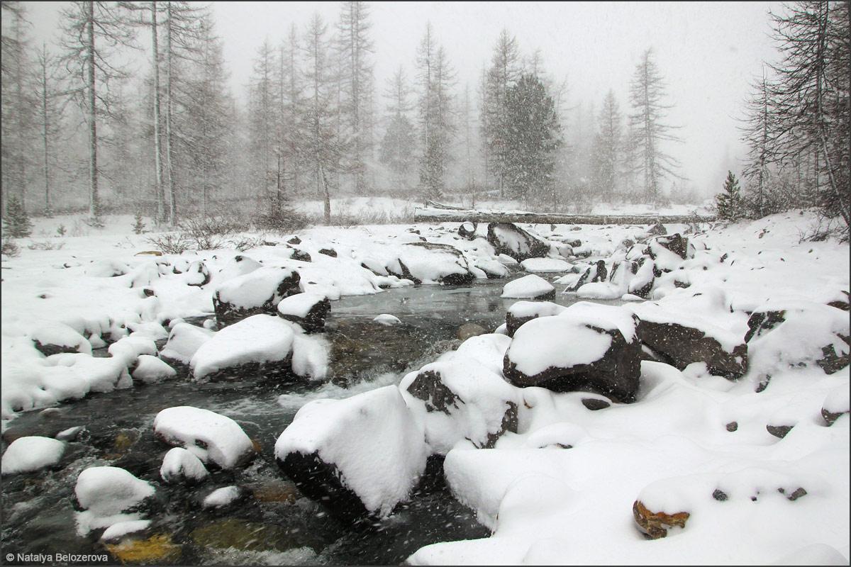 Снежное утро в долине Актру