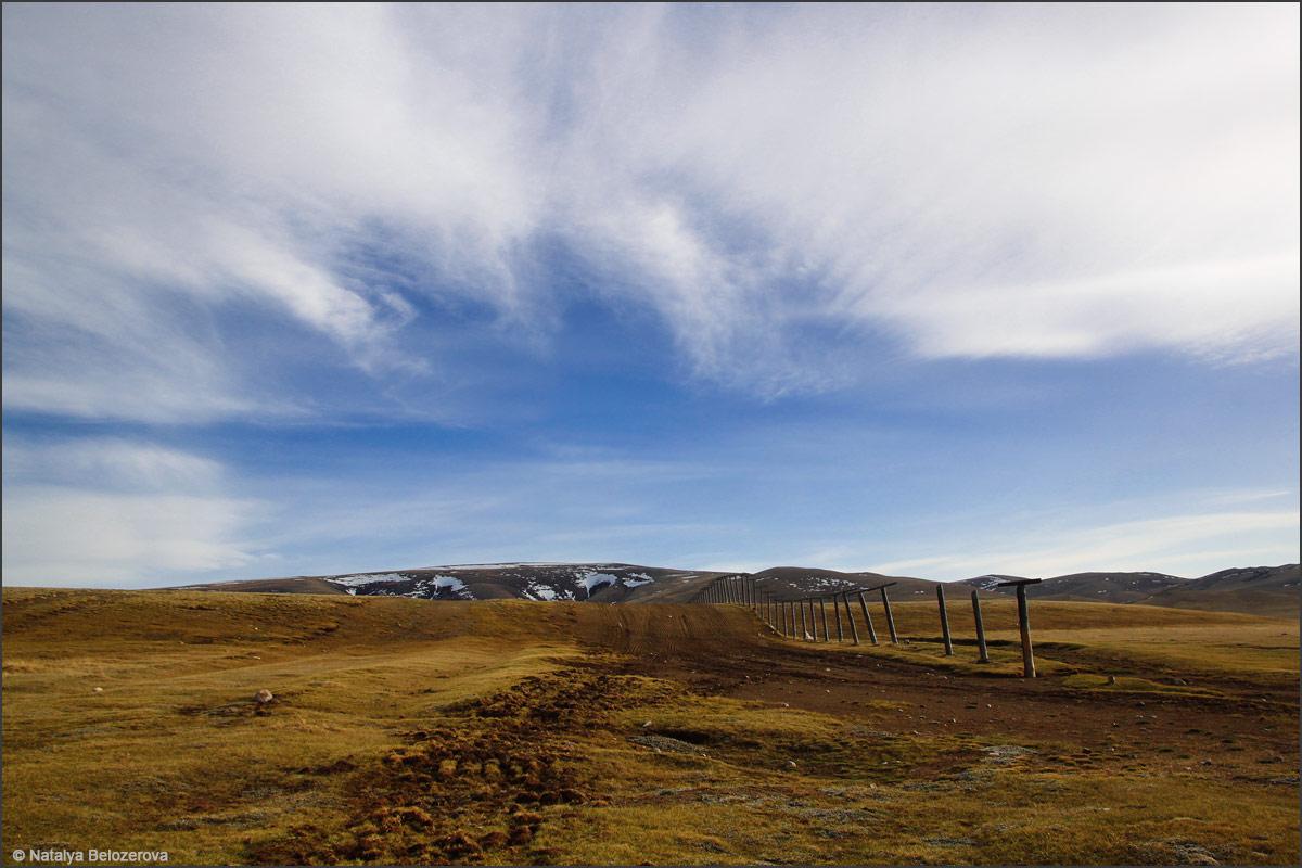 Чуйская степь. Близ границы с Монголией