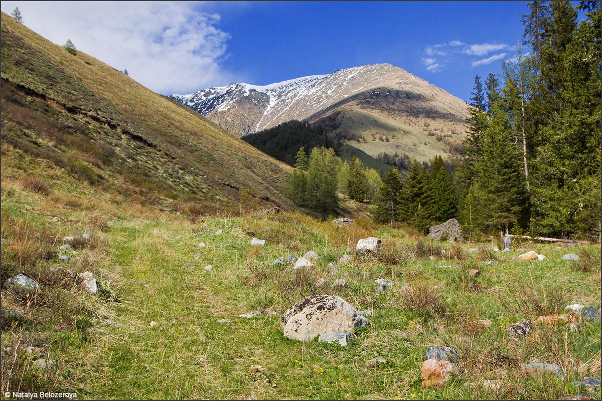 Долина Корумду-айры (приток Чибитки)