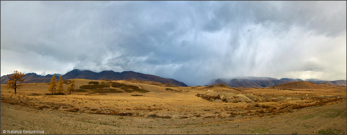Закат в Курайской степи. Вдали Курайский хребет