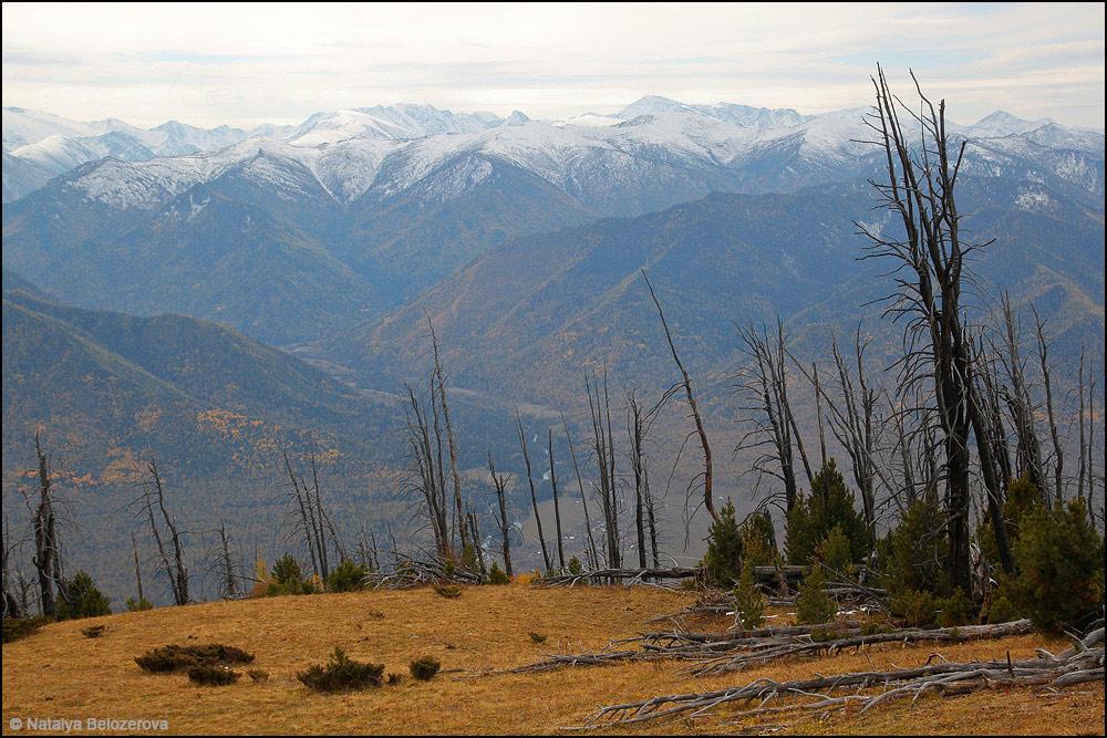 Долина Кучерлы с вершины Байды