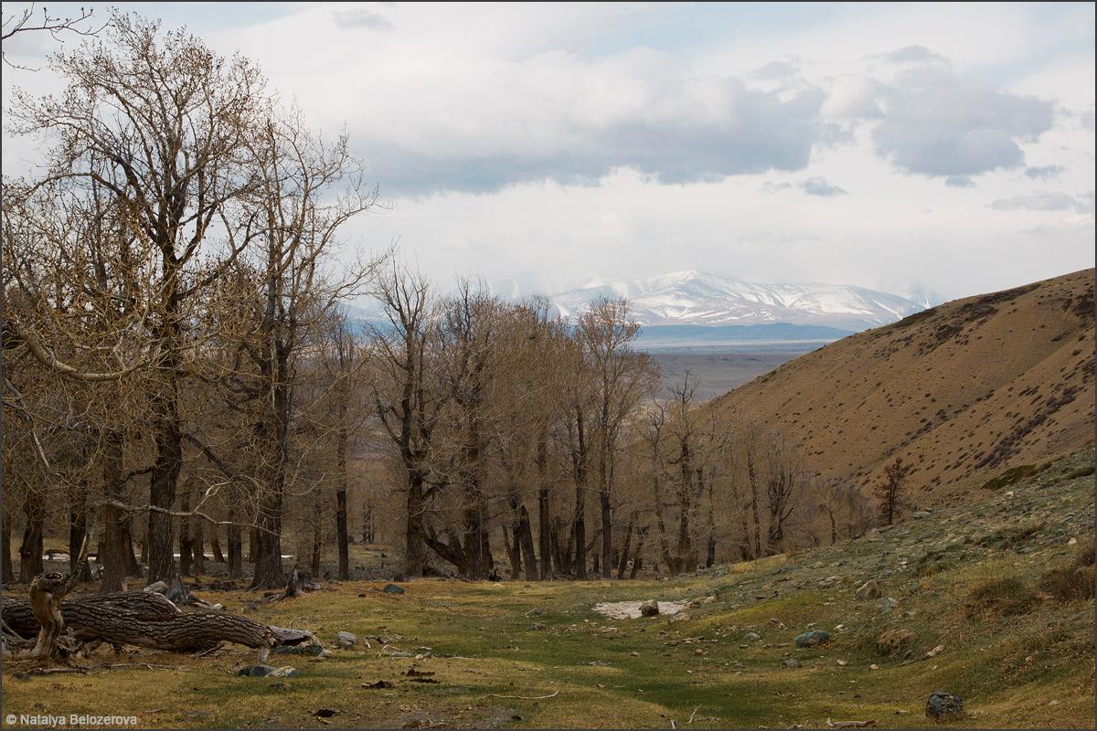 Долина Тыдтуярык