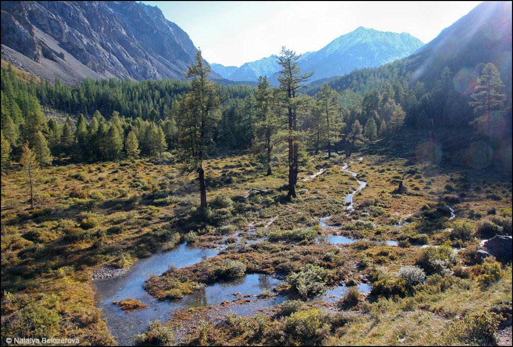 Долина Каракабак в зоне леса