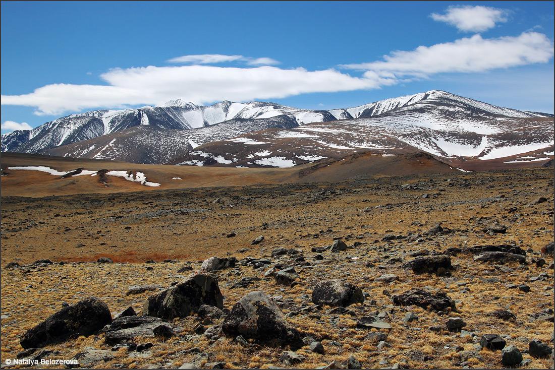 Южно-Чуйский хребет. Район горы Ирбисту