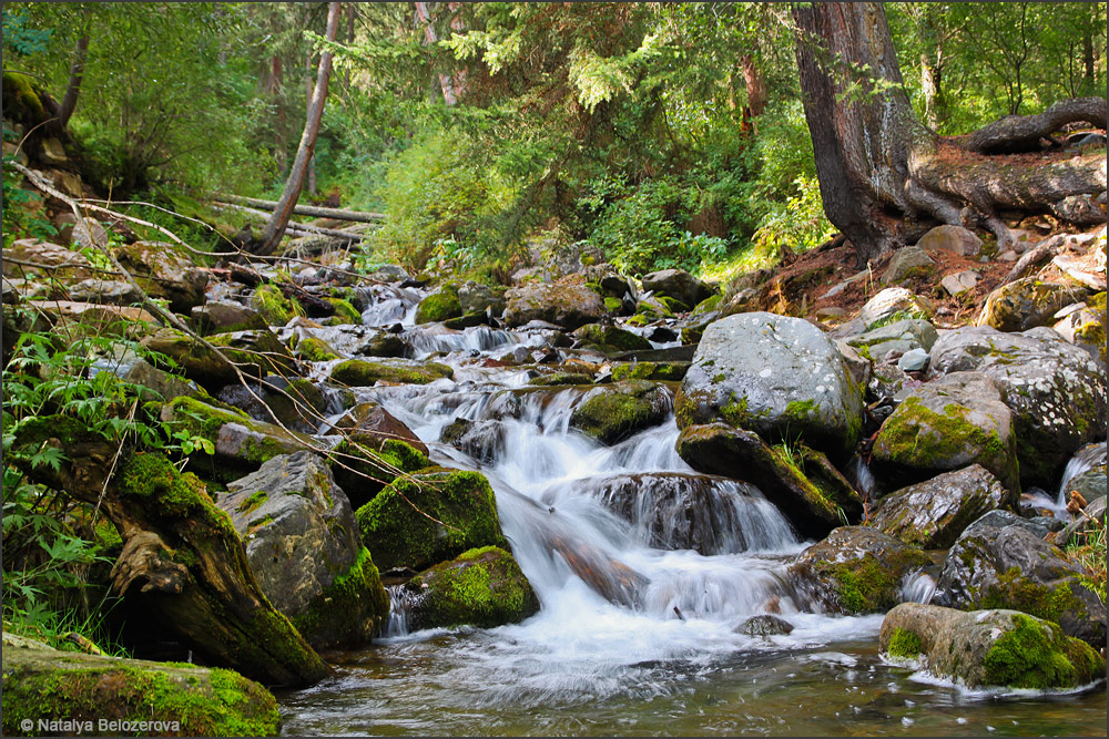Ручей Орой со стоянки близ устья