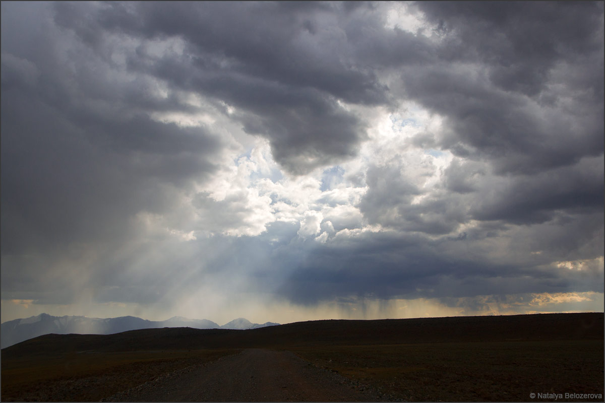 Дождливая Чуйская степь