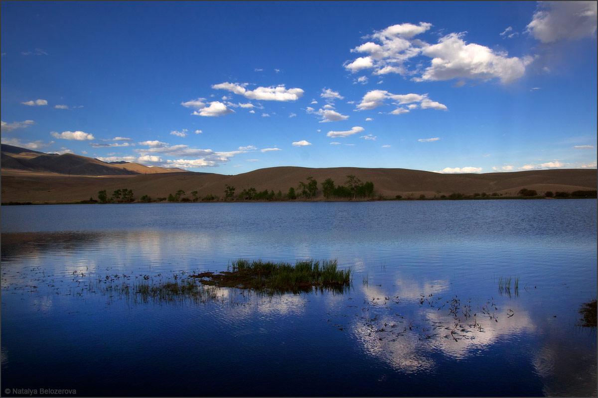 Озеро Красногорское. Чуйская степь