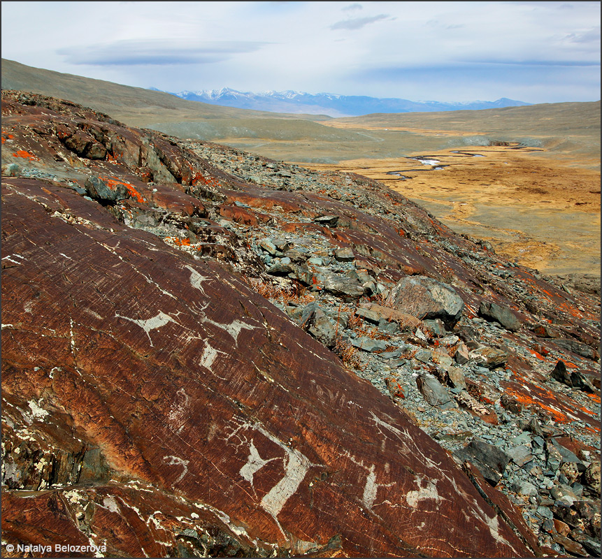 Петроглифы долины Елангаш. Вдали Курайский хребет