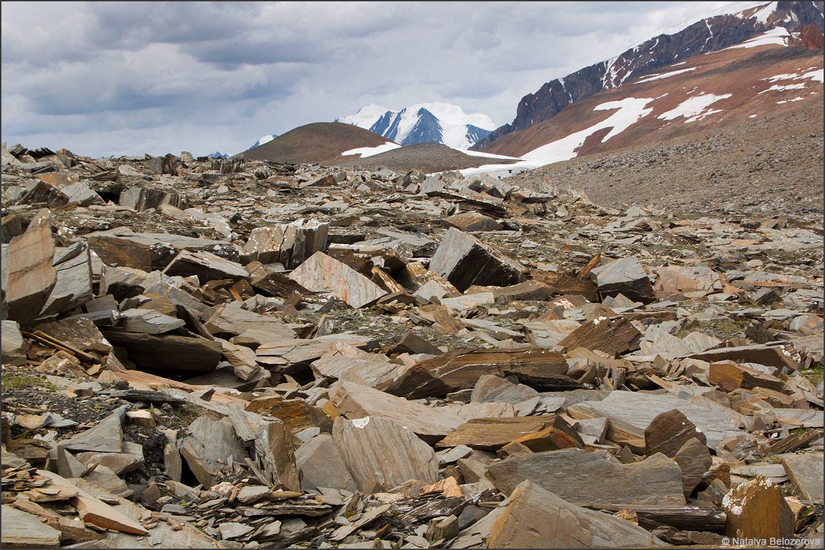 Маашей-баши на подходах к перевалу Эренбурга