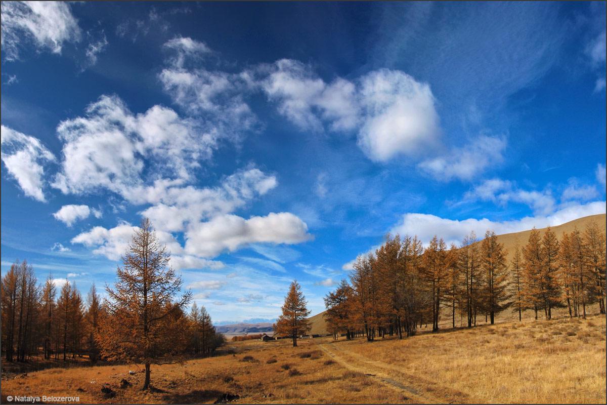 Долина Сайлюгема. Вдали Чуйская степь
