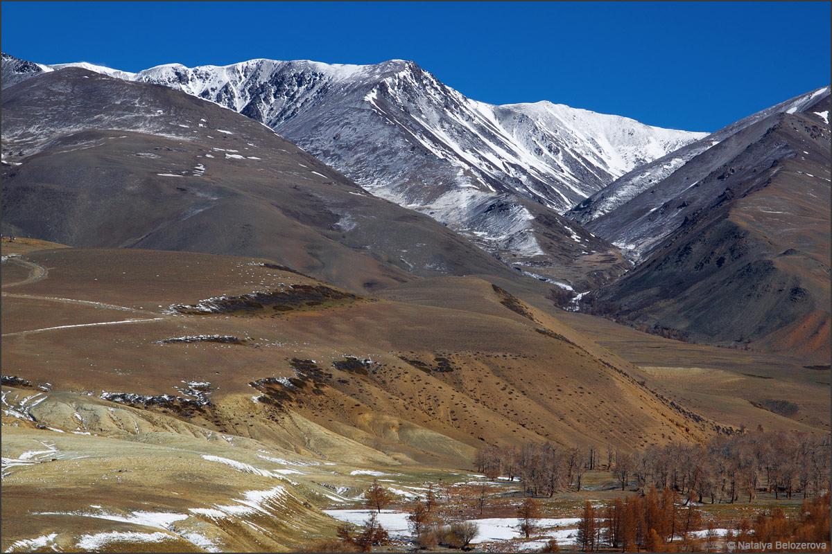 Долина Тыдтуярык. Курайский хребет