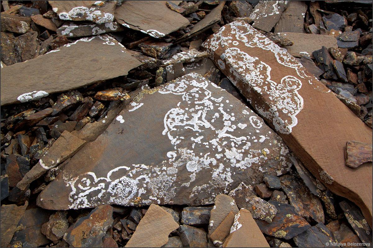 Кружевные камни близ перевала Эренбурга